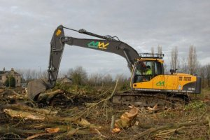 tree work auckland, ground clearance auckland, vegetation clearance auckland, ground preparation auckland