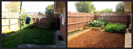 garden makeover auckland, gardener auckland